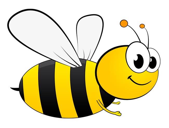 Пчёлы фото для детей
